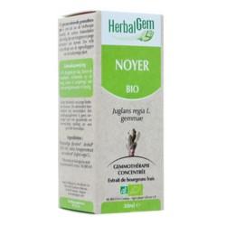 HerbalGem noyer bio